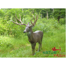 Natur Foam WHITE TAIL